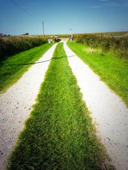 Der Weg führt nach vorn!